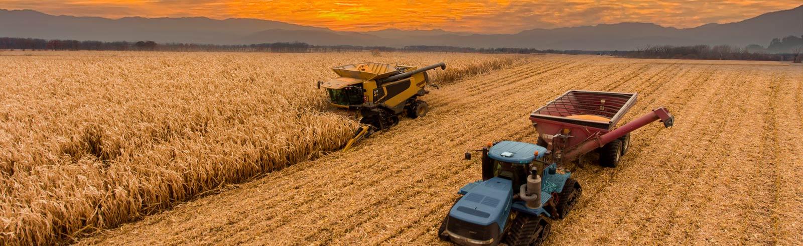 https://newfepa.com/wp-content/uploads/2021/02/Fepa-Estampación-Agricultura©.jpg?_t=1617708241